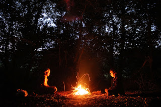The Woods - photo by Mike Gilpin and Benjamin Akira Tallamy